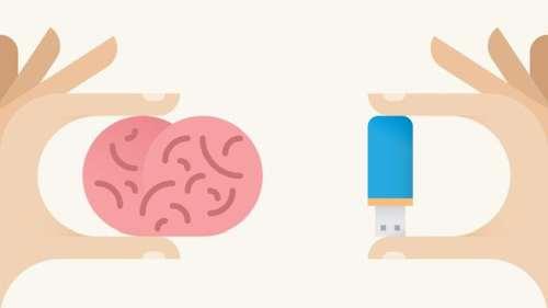 hafıza nasıl çalışır