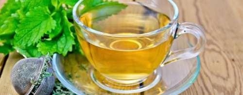 melisa çayı nasıl demlenir