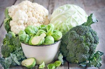 kanserden koruyan yaşlanmayı geciktiren yiyecekler