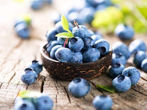 antioksidan yiyecekler nedir ne işe yarar