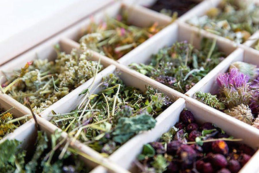 Akne tedavisi için bitkiler sivilceye ve akneye iyi gelen bitki çayları