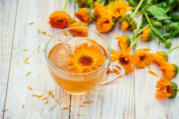 Aynısafa çayı kalendula calendula faydaları